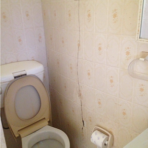 cracked_toilet_wall